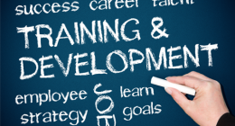 A lesson on training and development for HR and training managers